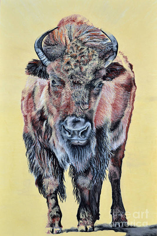 Buffalo Art Print featuring the pastel Stand Strong by Ann Marie Chaffin