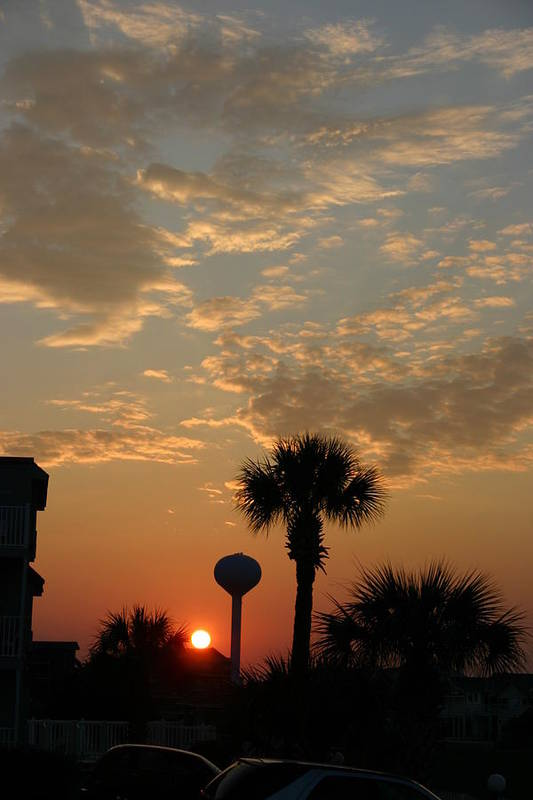 Clouds Art Print featuring the photograph Sunset with Palms by Beebe Barksdale-Bruner