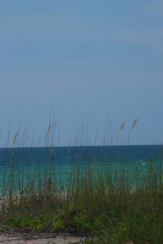 Landscape Art Print featuring the photograph Holmes Beach Florida 2 by Lisa Gabrius