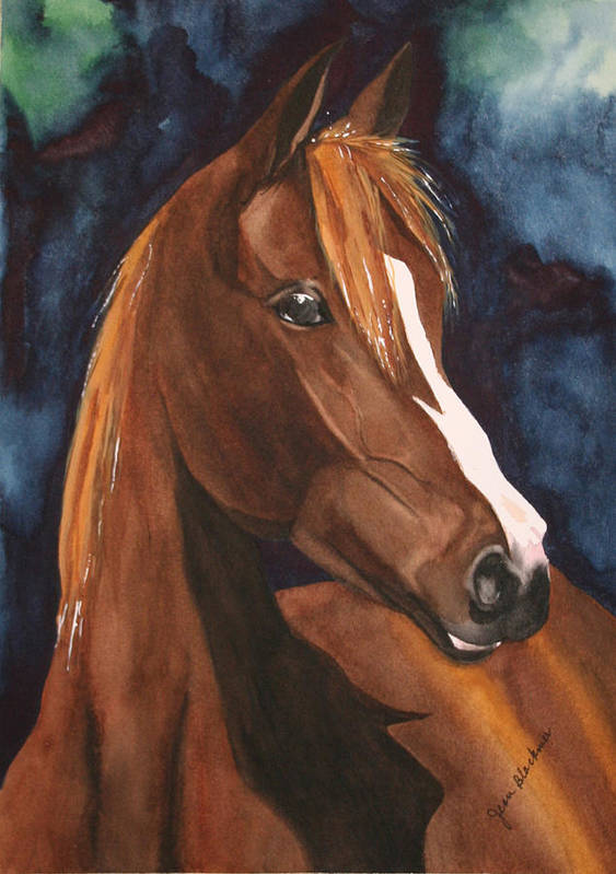 Horse Art Print featuring the painting Bay on Blue 2 by Jean Blackmer