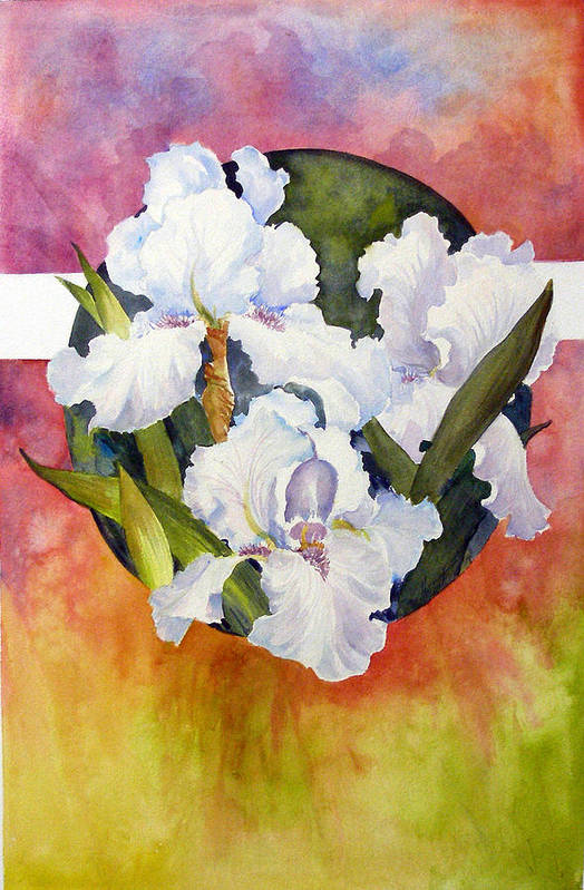 Watercolor;iris;floral;contemporary Floral;white Iris; Art Print featuring the painting Circle of Irises by Lois Mountz