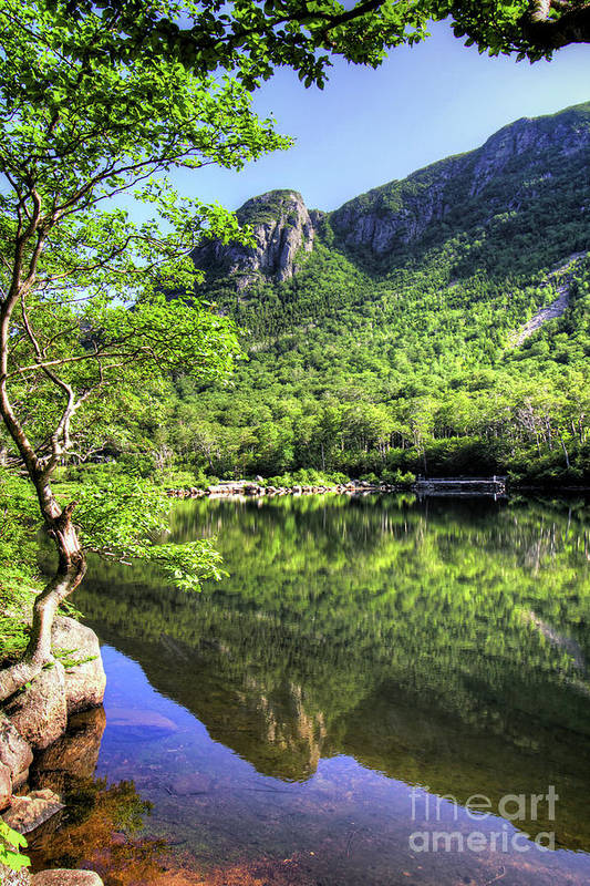 White Mountains Of New Hampshire Art Print featuring the photograph Eagle cliff by Diana Nault