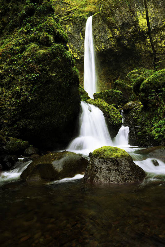Northwest Art Print featuring the photograph Flow by Chad Dutson