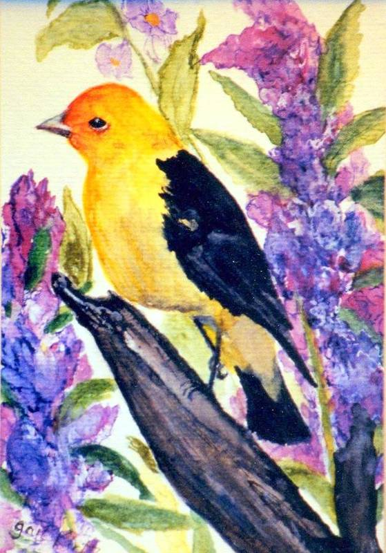 Birds Art Print featuring the painting Goldfinch by Gail Kirtz