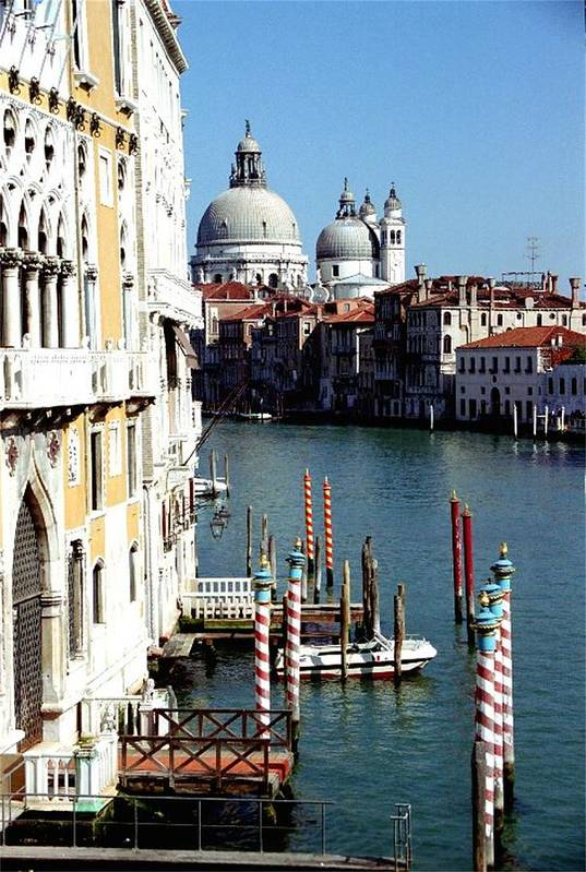 Venice Art Print featuring the photograph Grand Canal In Venice From Accademia Bridge by Michael Henderson