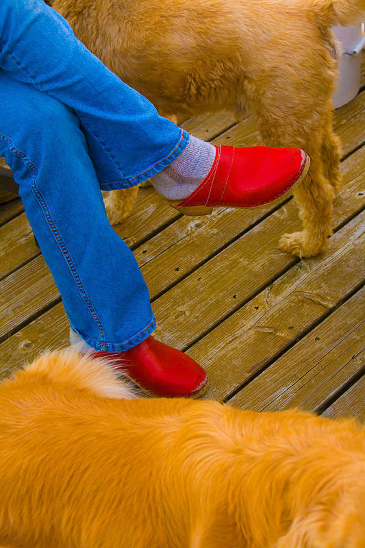Shoes Art Print featuring the digital art Marys Red shoes by John Toxey