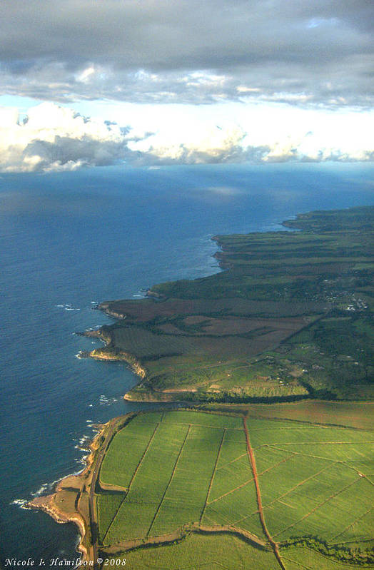 Maui Art Print featuring the photograph Maui Coastline by Nicole I Hamilton