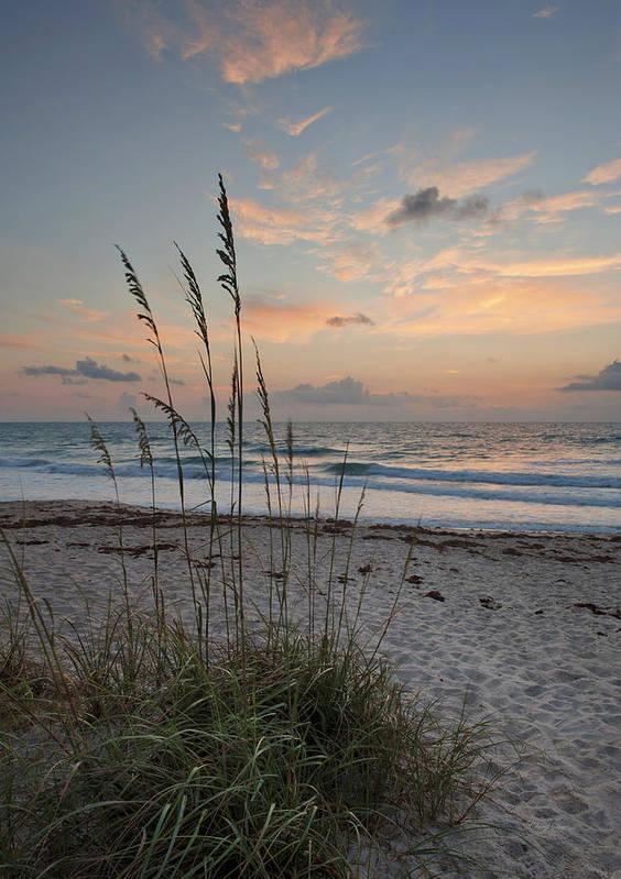 Sunrise Art Print featuring the photograph Melbourne Beach Sunrise by Cheryl Davis