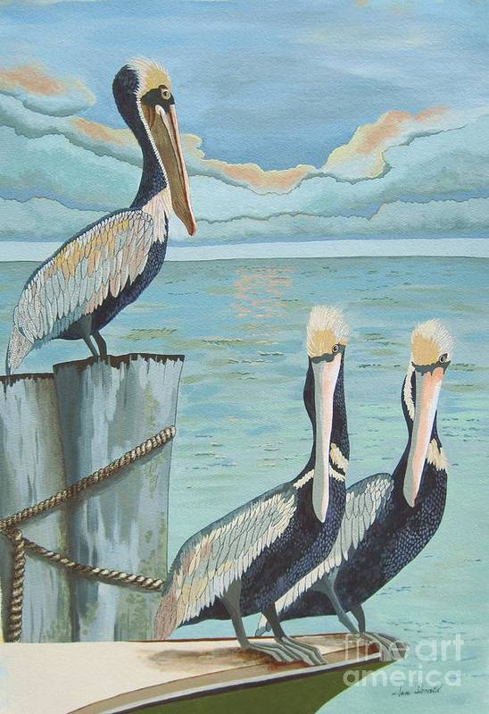 Seascape Art Print featuring the painting Pelicans Three by Jennifer Donald