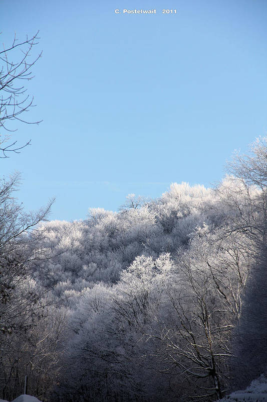 Ice Art Print featuring the photograph Point Mountain Ice Storm by Carolyn Postelwait