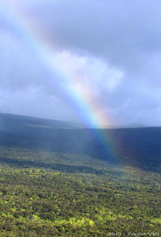 Rainbow Art Print featuring the photograph Rainbow by Nicole I Hamilton