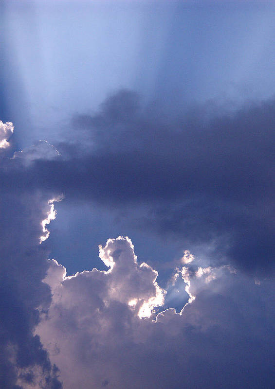Silver Lining Art Print featuring the photograph Silver Lining by Nicole I Hamilton