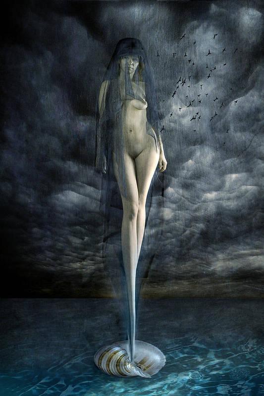 Art Print featuring the photograph Venus Noir by Zygmunt Kozimor
