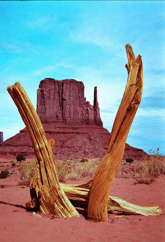 Monument Valley Art Print featuring the photograph Wood 'n Mitten by Richard Henne
