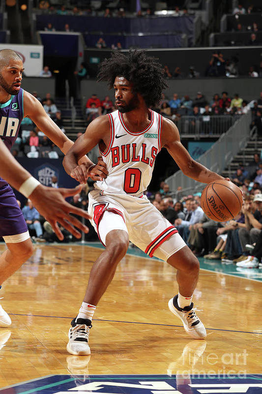 Coby White Art Print featuring the photograph Chicago Bulls V Charlotte Hornets by Kent Smith