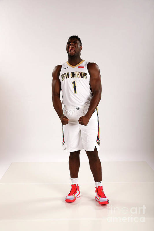 Media Day Art Print featuring the photograph 2019-20 New Orleans Pelicans Media Day by Layne Murdoch Jr.