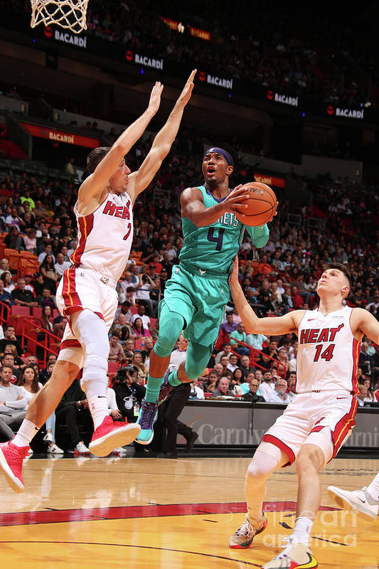 Nba Pro Basketball Art Print featuring the photograph Charlotte Hornets V Miami Heat by Issac Baldizon