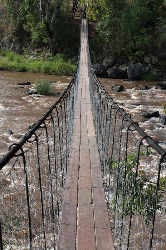 Long Art Print featuring the photograph A Long Suspension Bridge Over A River by Diane Levit / Design Pics