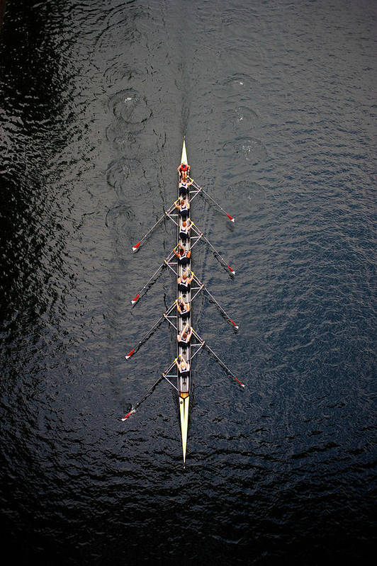 Viewpoint Art Print featuring the photograph Boat Race by Fuse