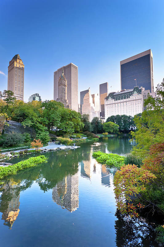 Downtown District Art Print featuring the photograph Central Park In New York City by Pawel.gaul