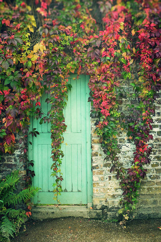 Tranquility Art Print featuring the photograph Door To The Secret Garden by Image By Catherine Macbride
