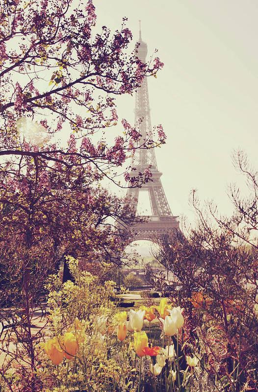 Treetop Art Print featuring the photograph Eiffel Tower, Paris by Liz Rusby