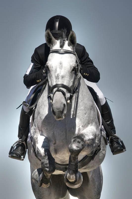 Horse Art Print featuring the photograph Equestrian Jumper by Rhyman007