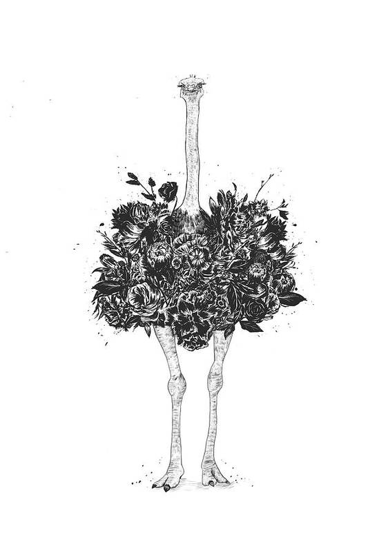 Ostrich Art Print featuring the drawing Floral ostrich by Balazs Solti