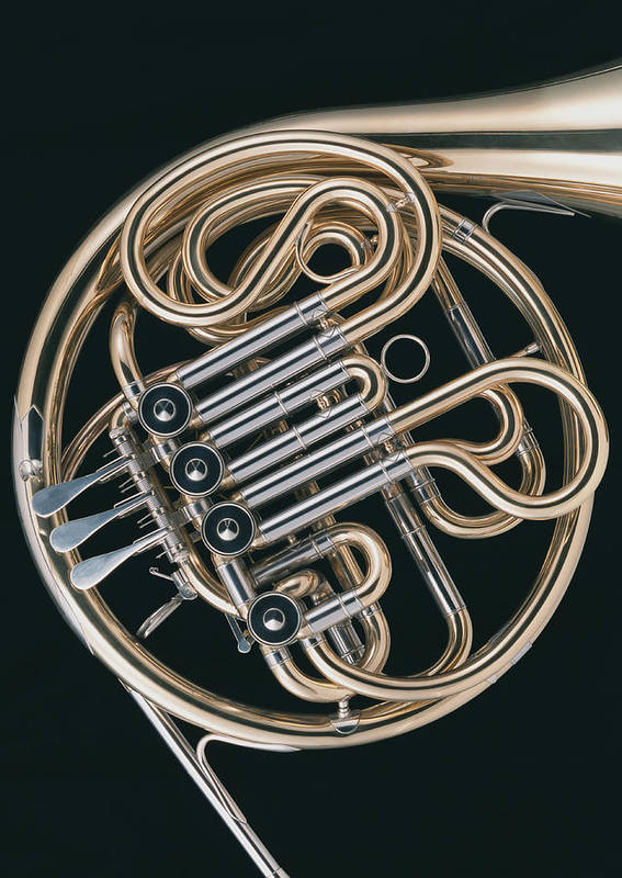 Music Art Print featuring the photograph French Horn by Imagenavi