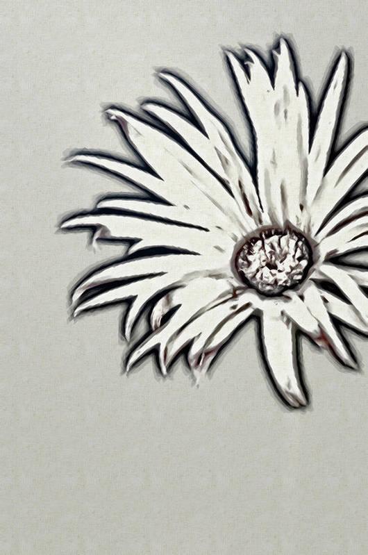 Rockville Art Print featuring the photograph Gerbera Flower Shape by Maria Mosolova