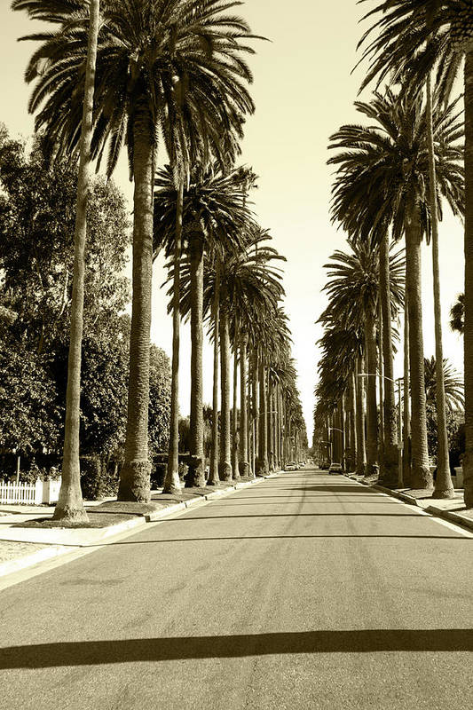 1950-1959 Art Print featuring the photograph Grayscale Image Of Beverly Hills by Marcomarchi
