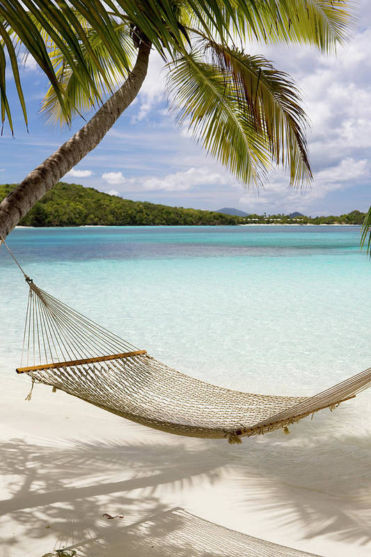 Water's Edge Art Print featuring the photograph Hammock Hung On Palm Trees On A by Cdwheatley