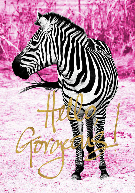 Hello Art Print featuring the painting Hello Gorgeous Zebra by Gail Peck