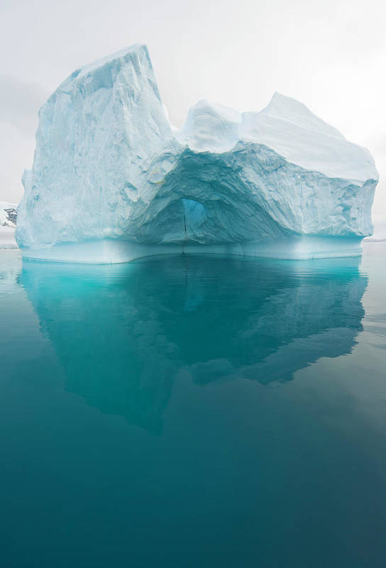 Iceberg Art Print featuring the photograph Iceberg And Reflections, Antarctic by Eastcott Momatiuk