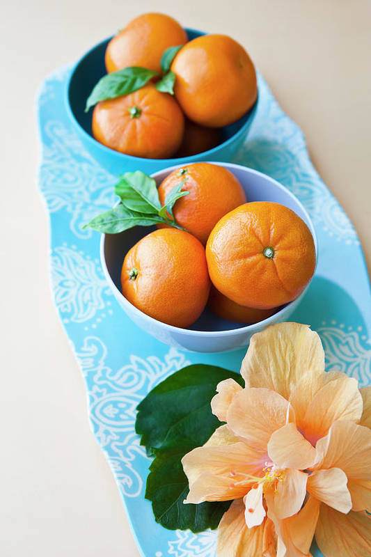 Florida Art Print featuring the photograph Mandarin Oranges On A Platter by Pam Mclean