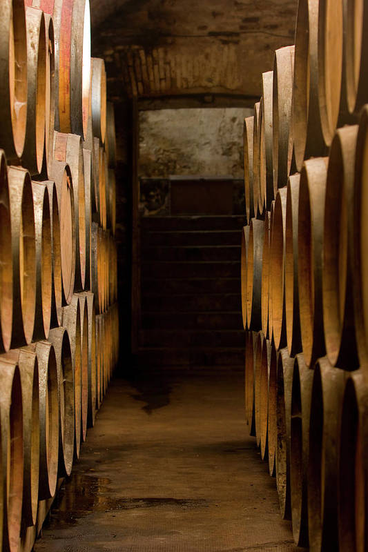 Alcohol Art Print featuring the photograph Oak Barrels At The Wine Cellar by Kycstudio