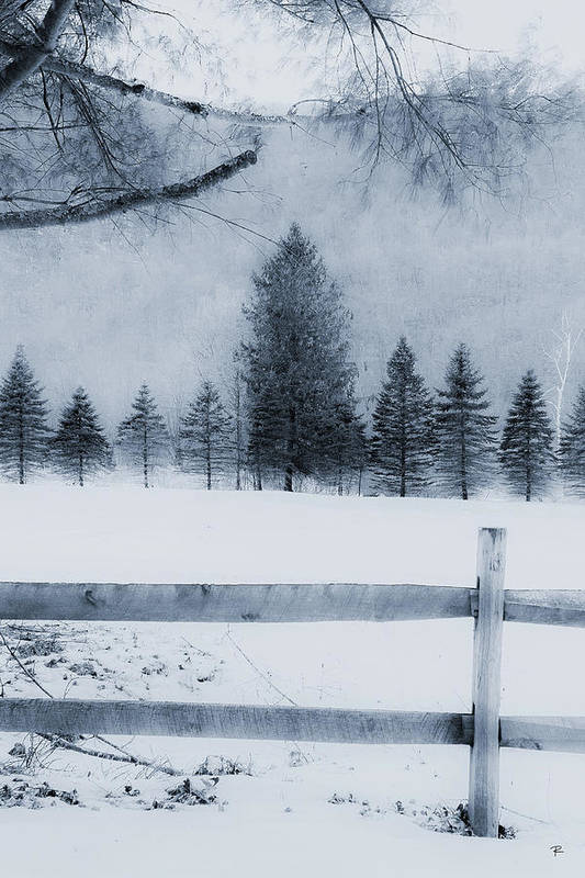 Art Print featuring the photograph Trees in Frost Valley by Tom Romeo