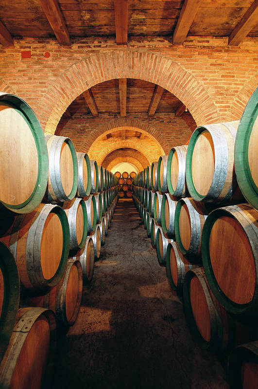 Working Art Print featuring the photograph Wine Barrels In Cellar, Spain by Johner Images