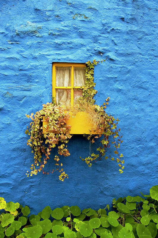Outdoors Art Print featuring the photograph Yellow Window On Bright Blue Wall & by Sarah Franklin Www.eyeshoot.co.uk