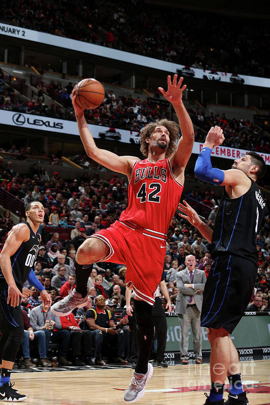 Nba Pro Basketball Art Print featuring the photograph Robin Lopez by Gary Dineen