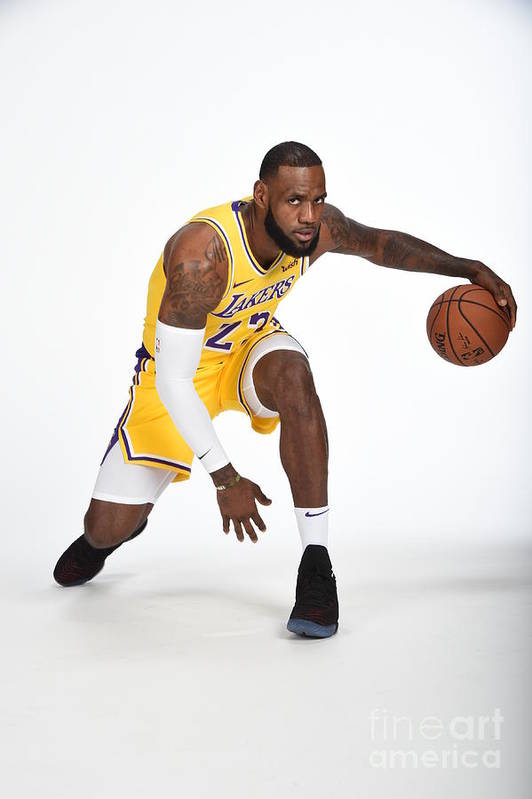 Media Day Art Print featuring the photograph Lebron James by Andrew D. Bernstein