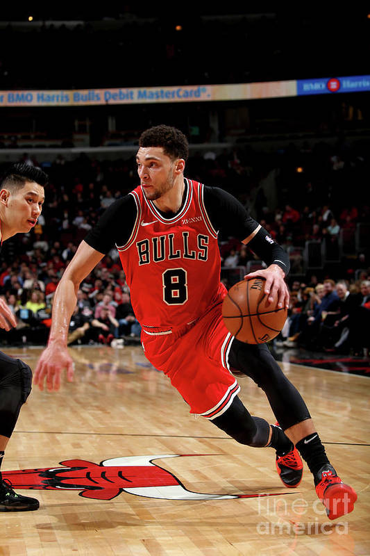 Chicago Bulls Art Print featuring the photograph Zach Lavine by Gary Dineen