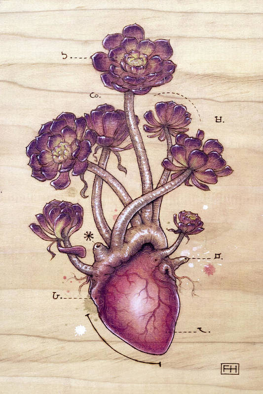 Pyrography Art Print featuring the pyrography Aeonium Heart by Fay Helfer