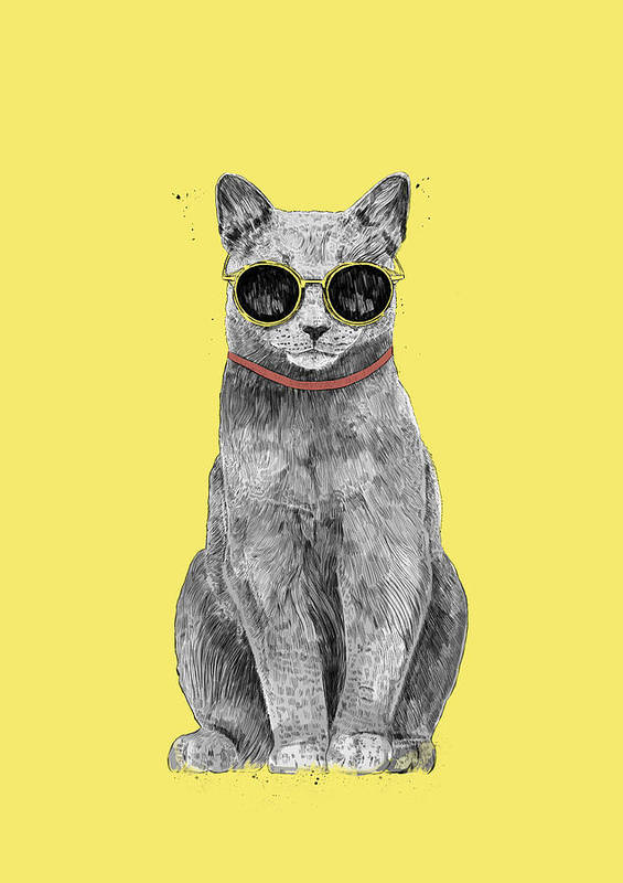 Cat Art Print featuring the drawing Summer Cat by Balazs Solti