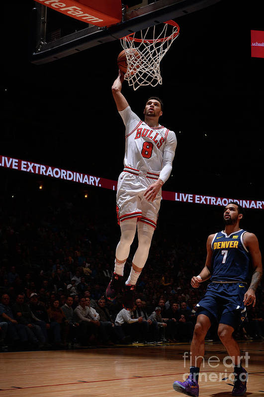 Chicago Bulls Art Print featuring the photograph Zach Lavine by Bart Young