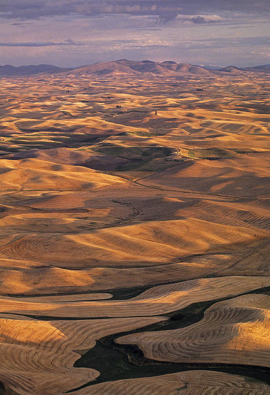 Usa Print featuring the photograph After Harvest From Steptoe Butte by Latah Trail Foundation