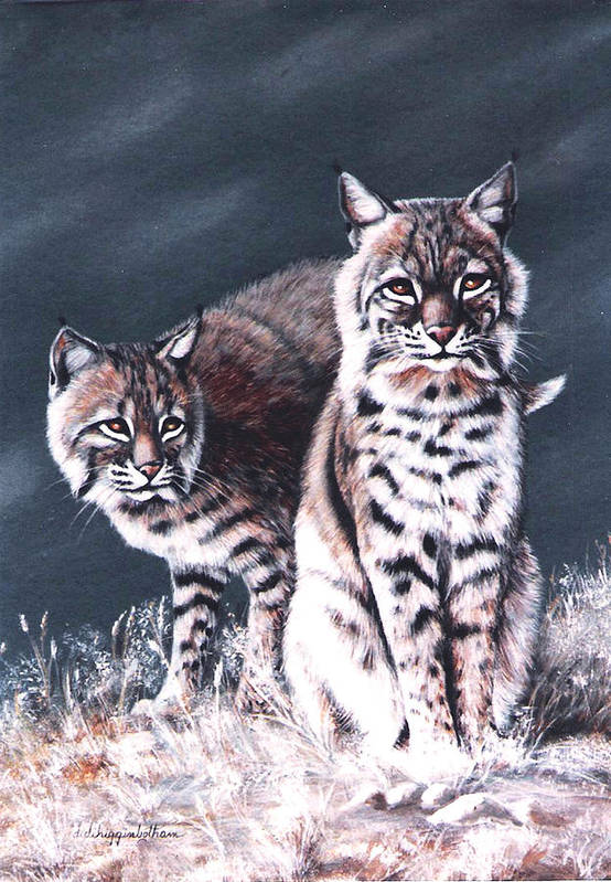 Bobcat Art Print featuring the painting Bobcats In The Hood by DiDi Higginbotham