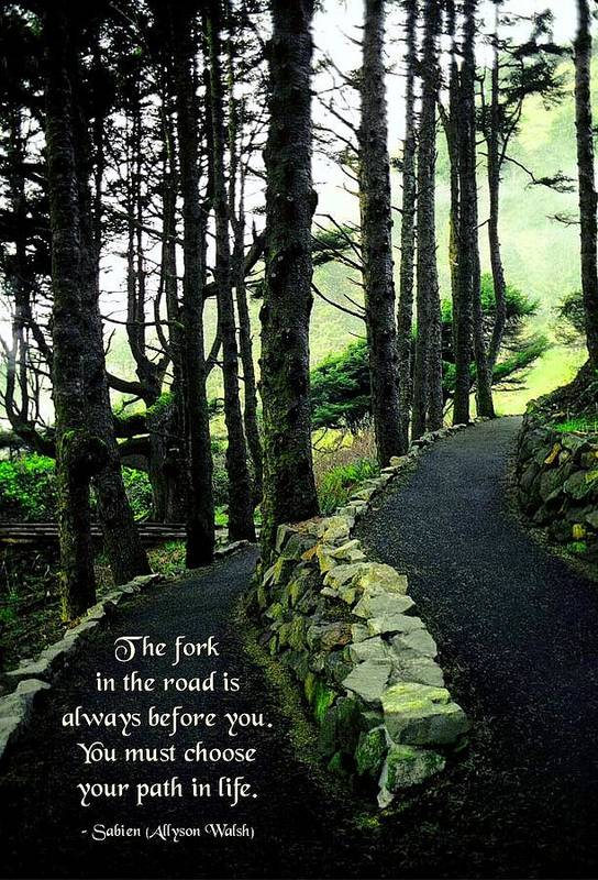 Quotation Art Print featuring the photograph Fork In The Road by Mike Flynn