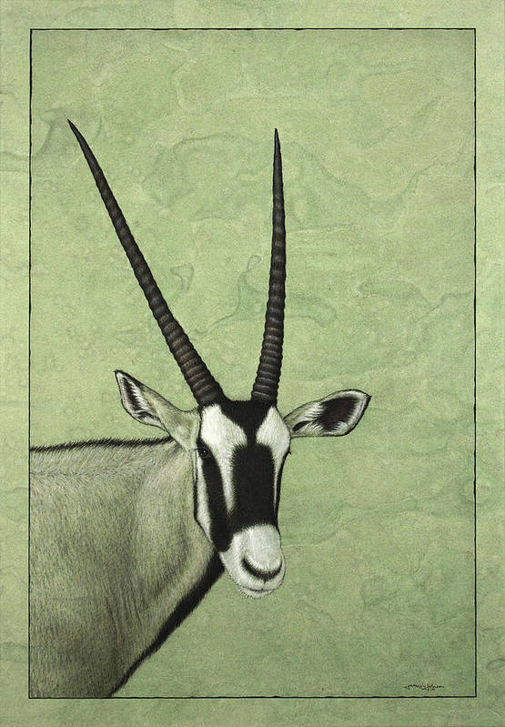 Gemsbok Art Print featuring the painting Gemsbok by James W Johnson