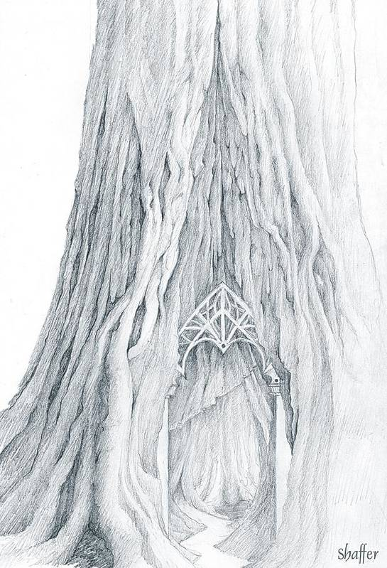 Lothlorien Art Print featuring the drawing Lothlorien Mallorn Tree by Curtiss Shaffer
